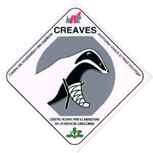 logo officiel des creaves